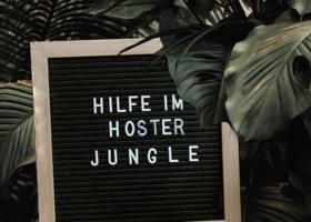 Tafel im Dschungel - Hilfe im Hoster Jungle